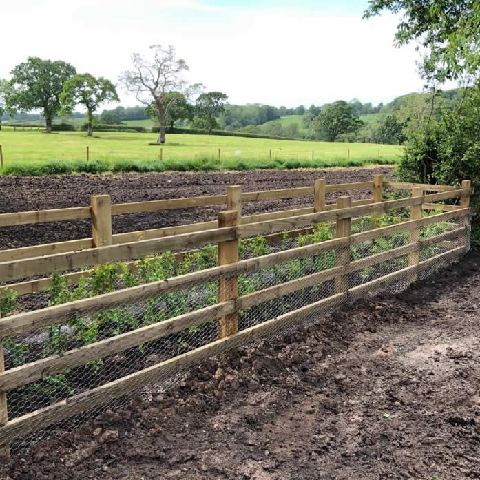 fencing for saplings