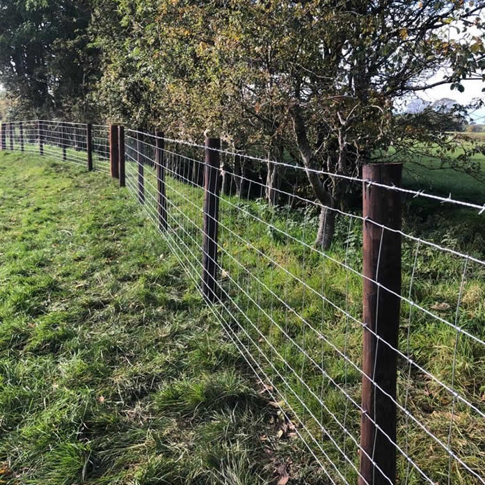 forest fencing
